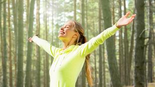 Az erdő 6 jótékony egészségügyi hatása