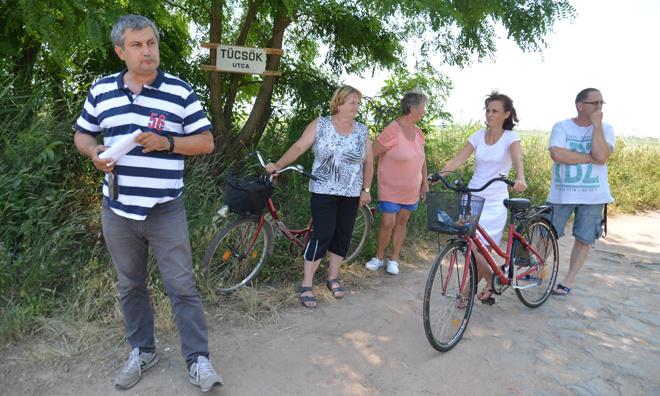 Nógrádi Tibor kitakaríttatná a Tücsök utca melletti elhagyatott bozótossal benőtt területet