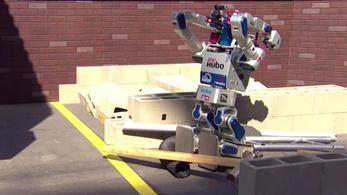 Az emberek tapsikoltak új robotgazdáik ükapjának