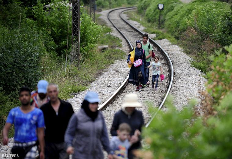 Görögország felől érkező menekültek sétálnak a síneken Macedóniában.