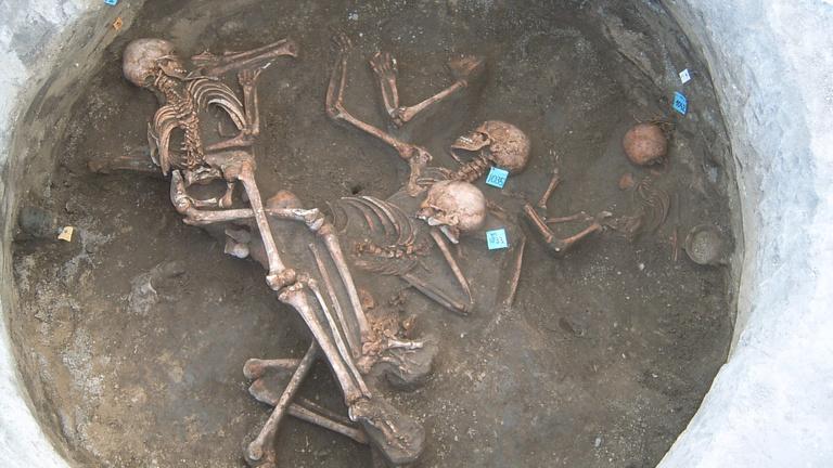 Magyar leletekből derül ki, honnan jöttek az európaiak