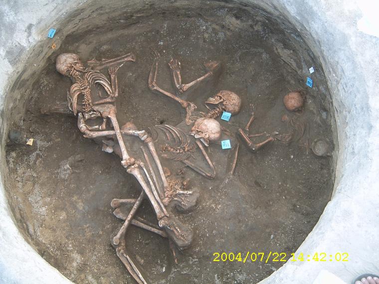 Az érdi bronzkori temető tömegsírja