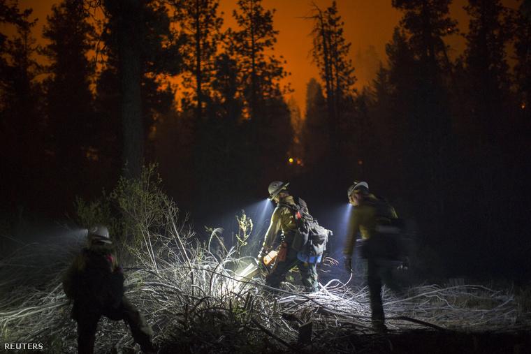 Tűzoltók San Bernardino megye erdőiben, 2015. július 19-én. Több, mint ötszáz tűzoltó dolgozott a legutóbbi, 13000 hektár területen pusztító erdőtüzek megfékezésében.