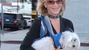 Jane Fonda rokkantkártyával parkolt