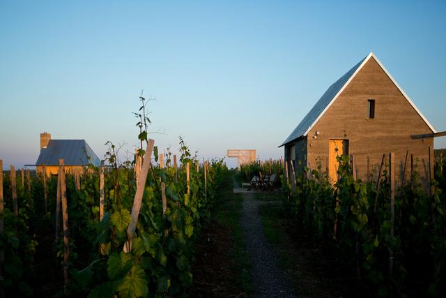 Népszerű volt a Gereben-Marián féle egri borterasz is.