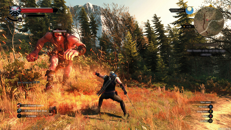 image the witcher 3 wild hunt-28293-2651 0006