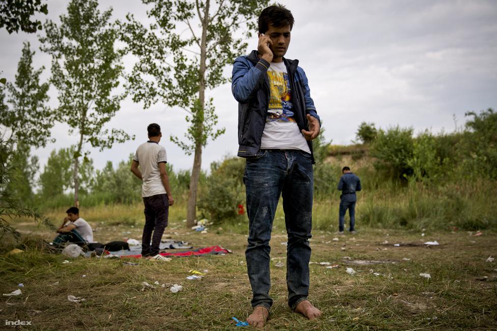 Belgrádot először sokkolta a hír, hogy a magyar kormány kerítést akar a zöldhatárra. Nem tudni, hogy válaszlépésként-e, de előfordult, hogy a menekülteket szerb rendőrök kísérték a magyar határhoz.
