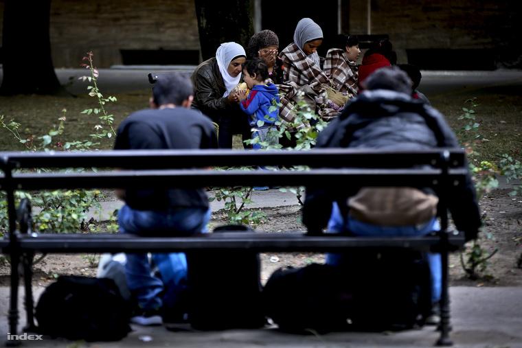 Menekültek Magyarkanizsán