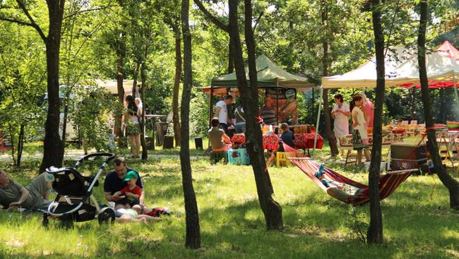 Vasárnap újranyílik a függőágyas Erdei Piac Budakeszin