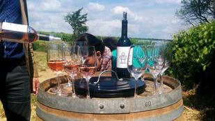 Ha szereti a bort, kiránduljon Balf környékére