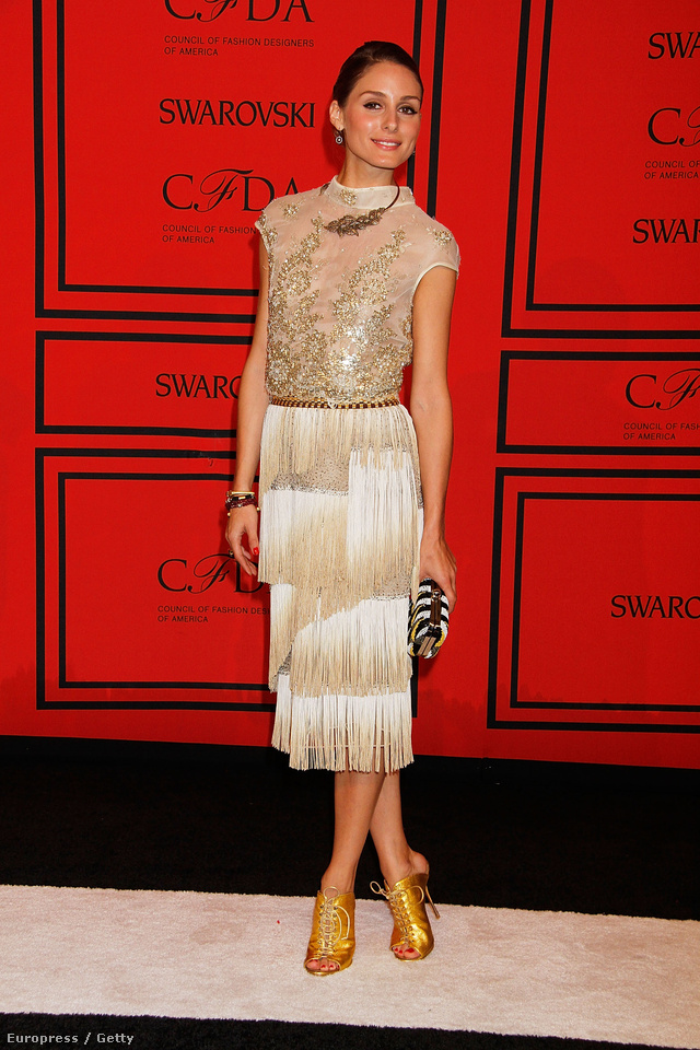 Ezt a púderes-arany ruhát a 2013-as CFDA Fashion Awardson viselte New Yorkban. Ebben a Dennis Basso által tervezett szettben egyébként több magazin is az est legjobban öltözött nőjének választotta meg. A táskát és a cipőt egyébként a Zarában vette a celebnő.