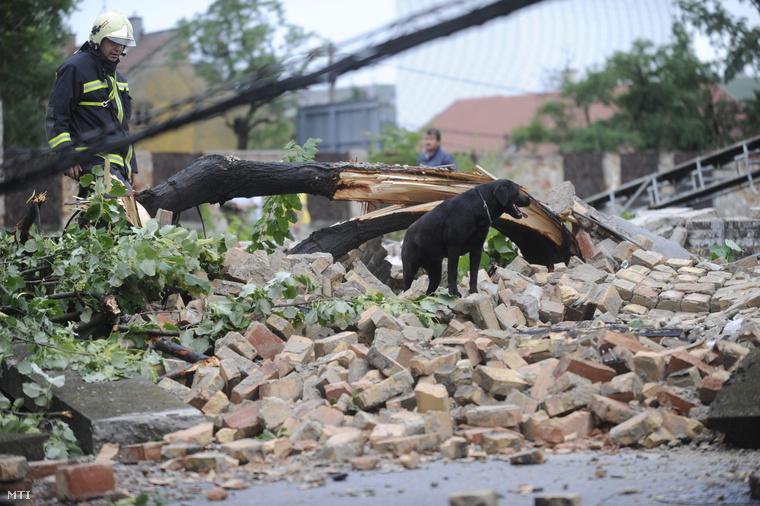 Egy tűzoltó Budapest X. kerületében a Cserkesz utcában keresőkutyájával a viharban kidőlt téglafal romjain