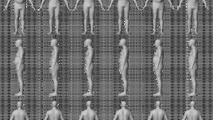 6 test, amiben egy dolog közös