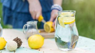 10 ok, hogy miért szokjon rá a citromos vízre