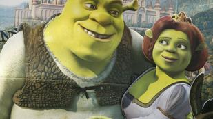 A Shrektől lesz kövér a gyerek