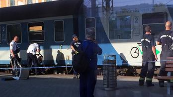 Halálra gázolt a vonat egy nőt Kelenföldi pályaudvaron