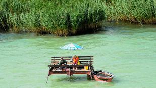Nyugi, nem a hőség miatt nem fog halat, hanem azért, mert béna!