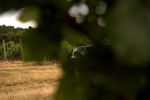 A Jimnyk természetes élőhelyén