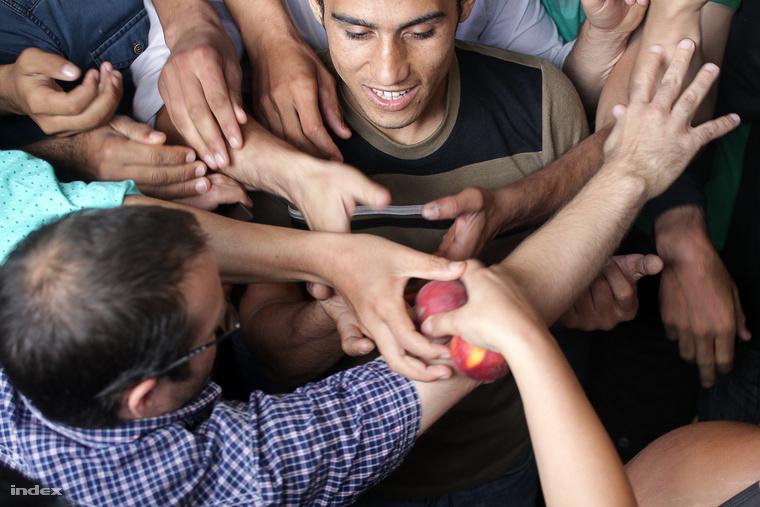 ÉtelosztásGaléria: Menekültek százai költöztek a Keletibe (15 kép)
