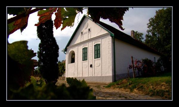 5. Hetényi János Pincészete, Decs                         A Hetényi család 1993 óta termeli borait a Szekszárdi borvidékhez tartozó Decsi-hegy és alsónánai Kürtöshegy területén. A nemcsak a borkészítéshez, hanem a vendéglátáshoz is értő vállalkozás legalább akkora hangsúlyt fektet az általuk nyújtott szolgáltatásokra (pl. apartman bérlés, bográcsozás, kerékpár-bérlés, íjászat, darts, horgászat) mint az általuk csúcsminőséginek mondott boraikra.
