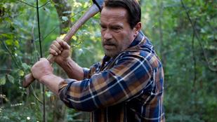 Átlagemberek oroszlános fotói < Arnold Schwarzenegger oroszlános képe
