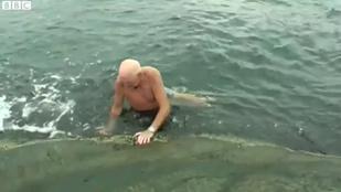 79 éves bácsi átúszott a fjordon az esküvőjére