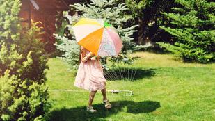 A kertet is védenie kell a kánikulától!