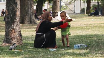 Ahol sok a menekült, ott maguk után szedik a szemetet