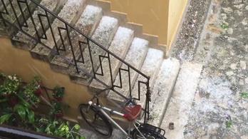 Diónyi jegek potyogtak Budapesten