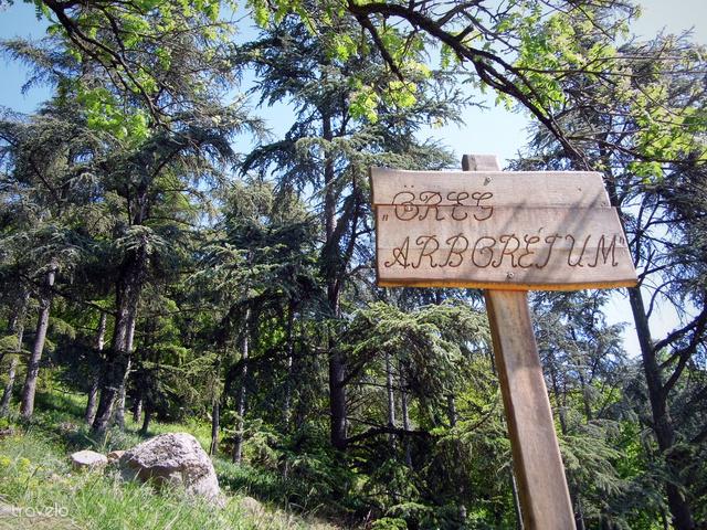 A Folly Arborétumot az alaptó családja gondozza