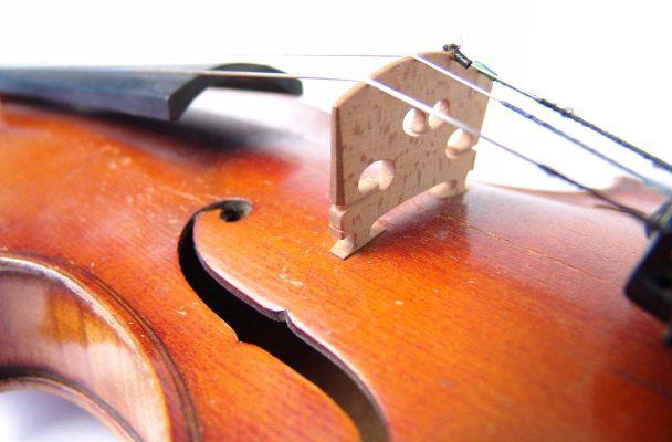 hegedű, illusztráció, töltelék