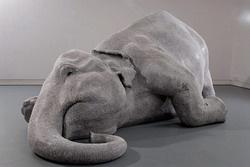 Bharti Kher: Elefánt