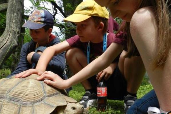Zoo Tábor - Fővárosi Állat- és Növénykert