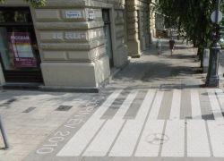 Chopin zebra