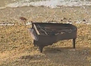 zongora Florida partjainál