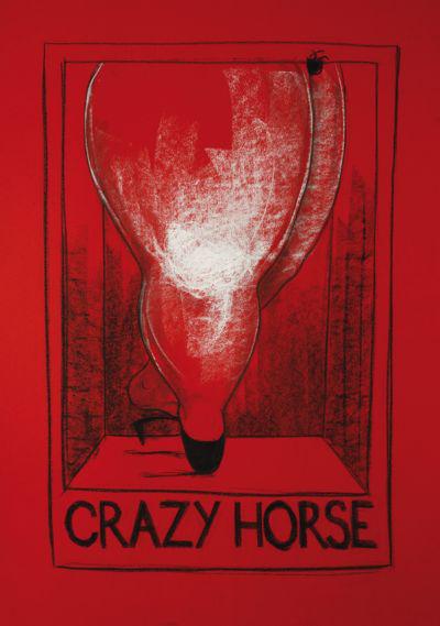 Andrej Tóth: Crazy Horse