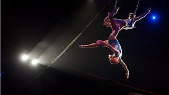 Nagy cirkusz lesz Budapesten!