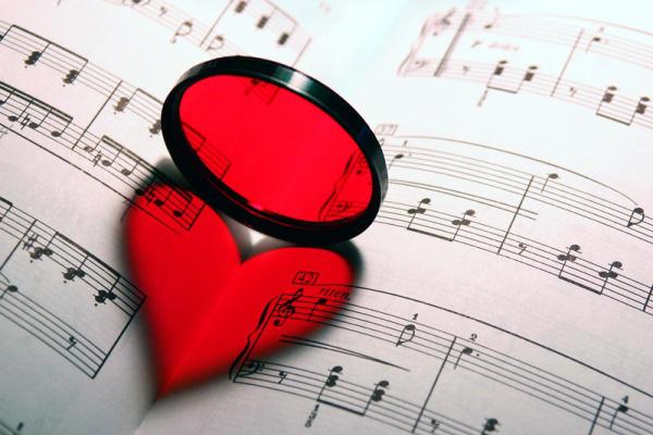 kotta, szív, szerelem