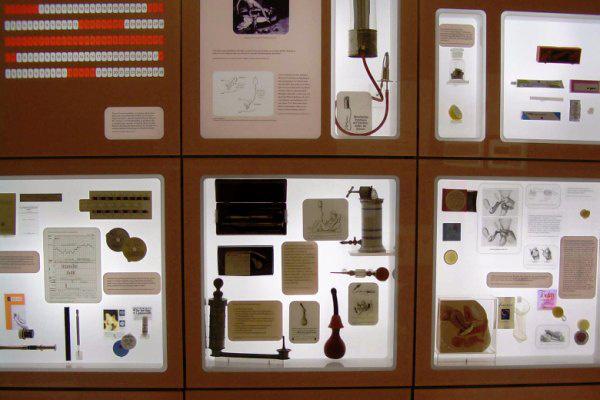 Fogamzásgátlás és Abortusz Múzeum, Bécs