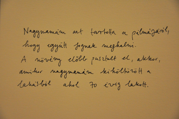 kArton Galéria: Ember Sári - Majd én helyetted, megnyitó (FFS - Átlátás)