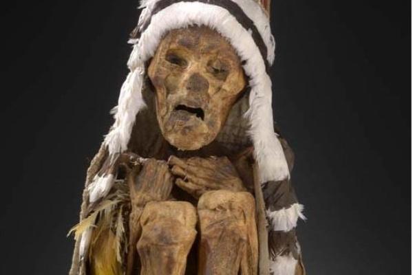 Múmia (Fotó: Természettudományi Múzeum)