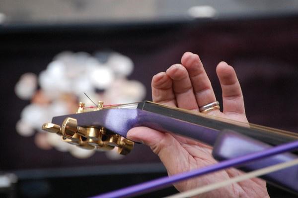 Hegedűs ujja (Forrás: Flickr.com)