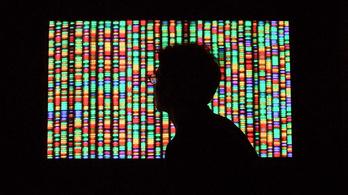 A fél internet elférne a génjeinkben