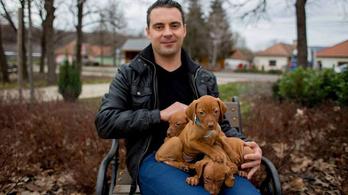 Vona Gábor beismerte, hogy ő vette el a Jobbik lelkét