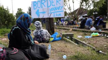 Szájkosarat kaptak a migrációkutatók