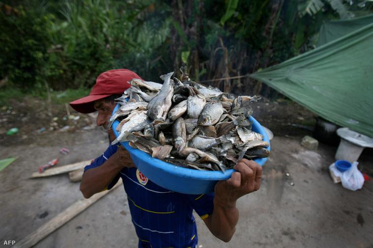 A halászatban is jelentős változást hoz
