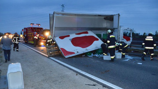 Halálos baleset volt az M85-ös autóúton
