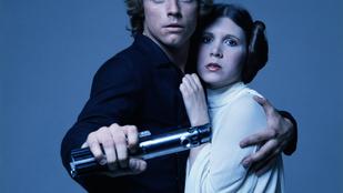 126 millió forintért vették meg Leia hercegnő modellűrhajóját