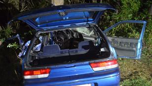 A Suzuki 22 éves, vétlen sofőrje halt meg a balesetben az 1-es úton