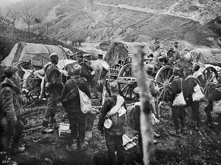 I. Péter szerb király és csapatainak visszavonulása az inváziót követően 1915-ben